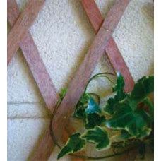 Traliccio estensibile in Legno colore naturale dimensioni 150x200, colore naturale