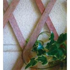Traliccio estensibile in Legno colore naturale dimensioni 100x300, colore naturale