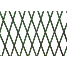 Traliccio estensibile in Legno verde dimensioni 100x300, colore verde
