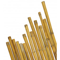 Canna in Bamboo dimensioni 240, colore naturale